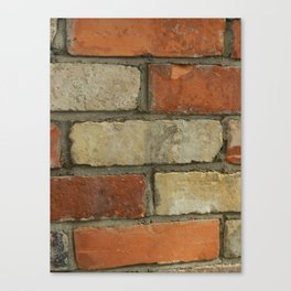 EVER HIT A BRICK WALL? Canvas Print