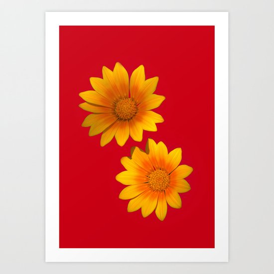 Two Yellow Flowers on Funky Red Background Art Print