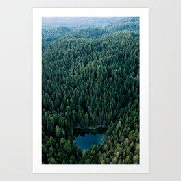 Magical hidden Forest Lake – Landscape Photography Art Print
