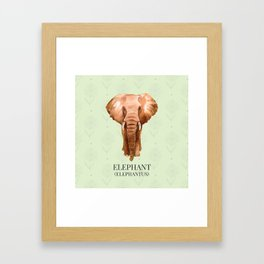 Elephant in Watercolour Framed Art Print