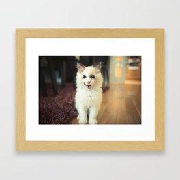 Pose Framed Art Print