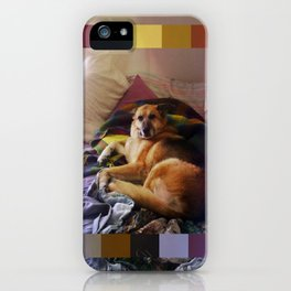 What a dog iPhone Case