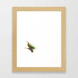 Insect Portrait | Grasshopper Framed Art Print