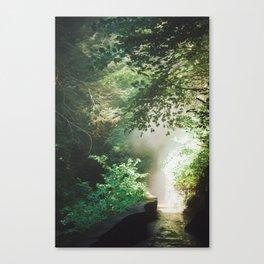 Into The Mist 2 Canvas Print