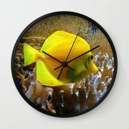Yellow Tang Wall Clock