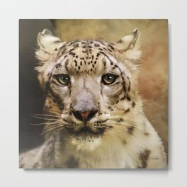 Hope For Tomorrow - Snow Leopard Art Metal Print