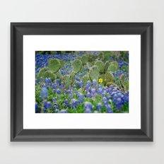 prickly springtime Framed Art Print