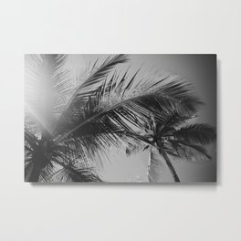 Punta Cana Palm Tree, Dominican Republic Metal Print