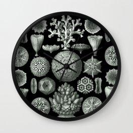 Ernst Haeckel - Hexacorallia Wall Clock
