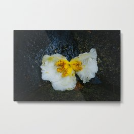 Flower in Nara Metal Print
