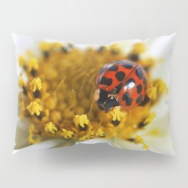Lady Bug and her Cosmo Pillow Sham