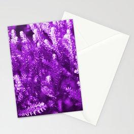 #25 Stationery Cards