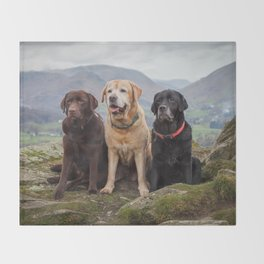 Labradors Throw Blanket