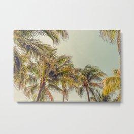Palms Away - Study 11 Metal Print