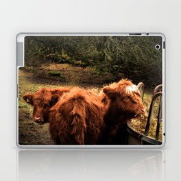 Highland Coos Laptop & iPad Skin
