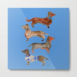 Dachshunds – Cornflower Blue Palette Metal Print