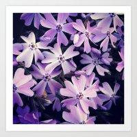 Color me purple Art Print