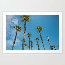 Palms and Sun Art Print