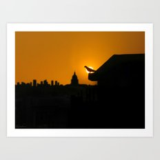 Pigeon Eclipse2 Art Print