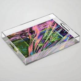 flow Acrylic Tray