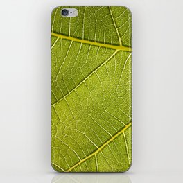 Fig Leaf iPhone Skin
