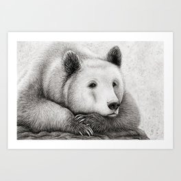 Brooding Bear Art Print