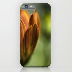. . . Slim Case iPhone 6s