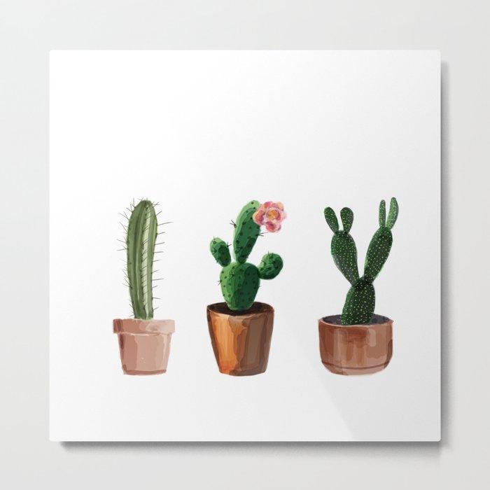 Three Cacti On White Background Metal Print