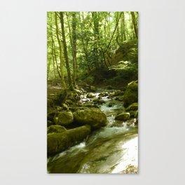 Ambiance ruisseau Canvas Print