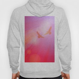 Birds, seagulls silhouette on pink background, sunset, dawn. Hoody