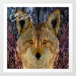 Long Night Coyote Art Print