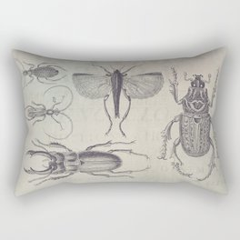Vintage Beetles And Bugs Rectangular Pillow