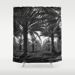 Date palms. Coachella Valley, California Shower Curtain