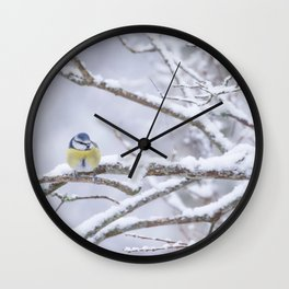 Blue Tit On A Snowy Branch Winter Scene #decor #society6 Wall Clock