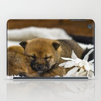 shiba inu iPad Cases featuring Red Shiba Inu Puppy by Blue Lightning Creative