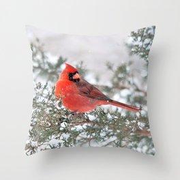 Winter's Beauty Cardinal Throw Pillow