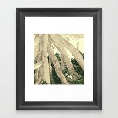 TWIGGY PICKING UP LEAVES LOL Framed Art Print