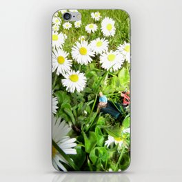 A Field of Daisies  iPhone Skin