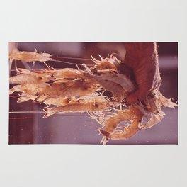 A Handful of Shrimp Rug