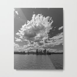 the needles in black and white Metal Print