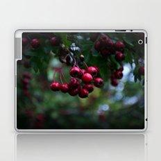 Pyracantha Laptop & iPad Skin