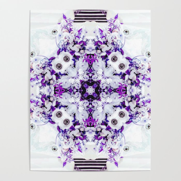 Anemone Fusion Two Poster