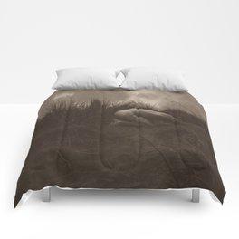 Desperation  Comforters