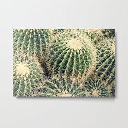 Cactusss Metal Print
