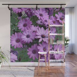 Lilac & Sage Color Purple Daisy Flowers Garden Wall Mural