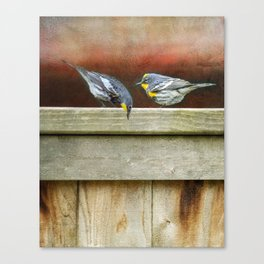 Two Warblers on The Fence Canvas Print