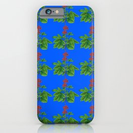 Spring / Summer Art by Victoria Deregus_34 iPhone Case