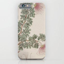 Flower 129 inga purpurea Purple Inga or Soldier wood20 iPhone Case