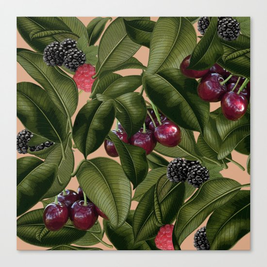 FRUITS AND LEAVES Canvas Print