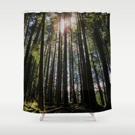 Sunbeams Through the Trees Shower Curtain